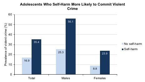 Adolescents who self-harm more likely to commit violent crime