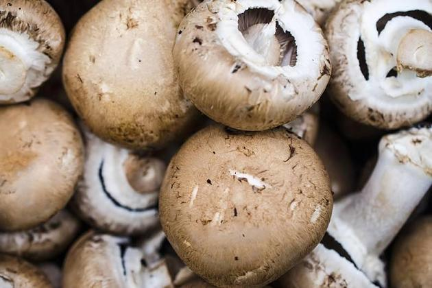 New in the supermarket: Vitamin D-mushrooms – what Stiftung Warentest says?