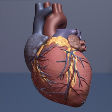 In study, TAVR is superior to surgery for low-risk patients with aortic valve stenosis