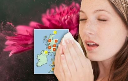 Pollen count: 'High' warnings across the UK – signs and symptoms of hay fever