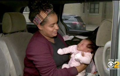 Mom Says She Will Fight the Fine After Getting a Parking Ticket While Breastfeeding