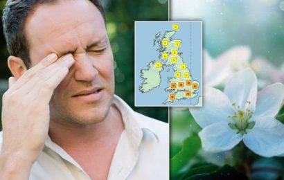 Pollen count warning: Hay fever sufferers at risk – five ways to avoid symptoms