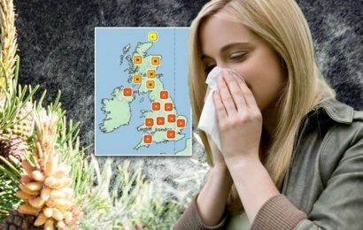 Pollen count warning: HIGH levels today – the worst time to go outside revealed