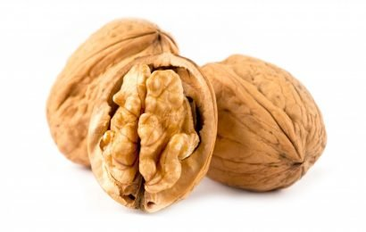 Walnut diet: How nuts the lose weight without feeling Hungry boosts