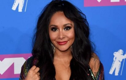 Wait, Snooki Looks Like THIS In A Bikini Just 2 Weeks After Giving Birth??