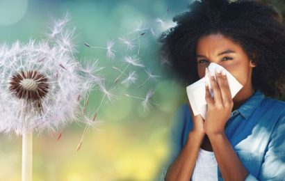 Pollen count warning: Hot weekend brings 'very high' counts  how to ease hay fever symptom