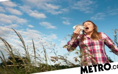 When does hayfever season start and what are the symptoms?