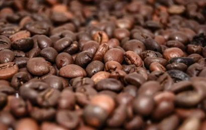 Algorithm provides customized caffeine strategy for alertness