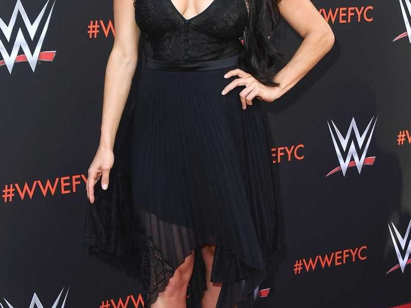 Nikki Bella Reveals a Cyst on Her Brain Forced Her into WWE Retirement: 'It's Super Scary'