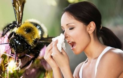 Pollen count forecast today: High counts could trigger hay fever – these foods can help