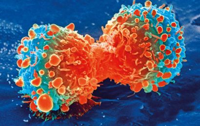 New alternate cell growth pathway could lead to better treatments for metastatic cancers