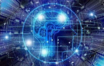 Researchers link aging with changes in brain networks related to cognition