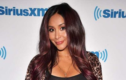 Snooki: Having Sex After Giving Birth to Third Baby 'Just Hurts'