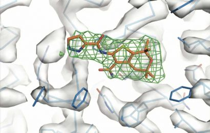 Hinge-like protein may open new doors in cystic fibrosis treatment