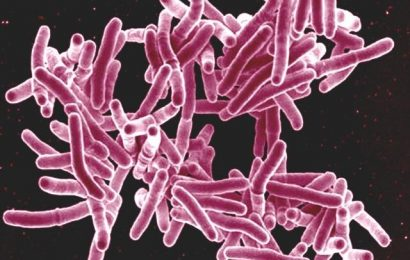 Standard TB tests may not detect infection in certain exposed individuals