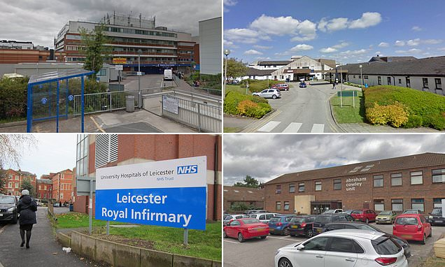 Lives 'at risk because NHS hospitals have been allowed to crumble'