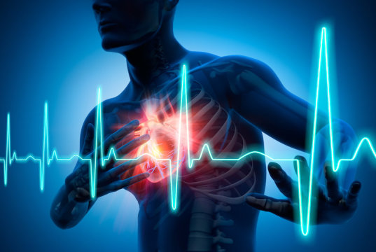FDA phase 1 trial shows hydrogel to repair heart is safe to inject in humans — a first
