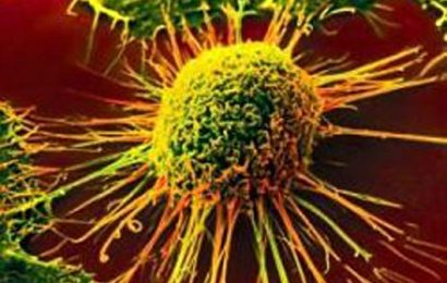 Researchers find key to help treat different cancers