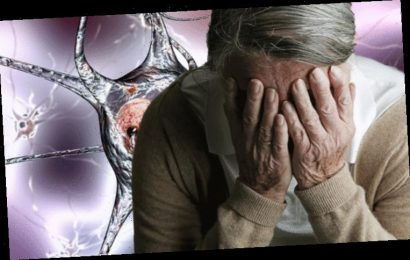 Dementia symptoms: Seven early signs of vascular dementia to watch out for