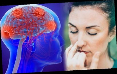 Parkinson's disease: Losing this sensation could be a warning sign of the condition