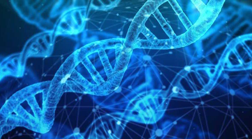 Breakthrough in understanding rare genetic skin condition