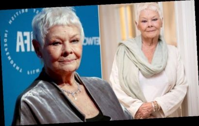 Judi Dench health: 'I'm not going to give in' Actress opens up about her health battle
