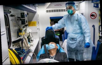 Coronavirus cases: How many more will die of virus? Experts predict heartbreaking number