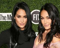 Nikki and Brie Bella Shut Down Planned IVF Rumors