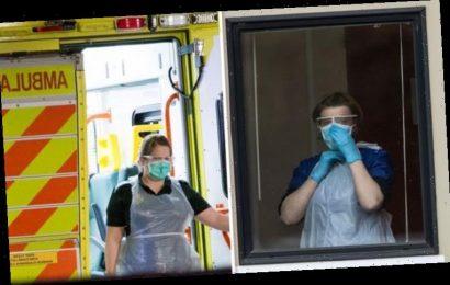 Coronavirus protection: Do N95 masks work? Should I wear a face mask amid outbreak?
