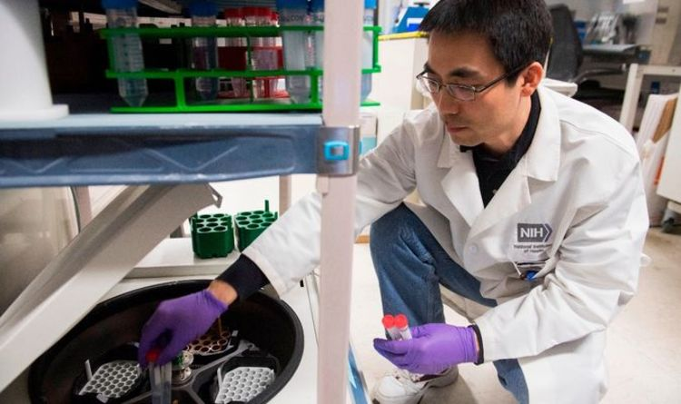 Researchers investigate how cancer treatment could help with COVID-19 cure