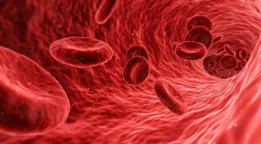 Researchers conduct metabolite analysis of ALS patient blood plasma