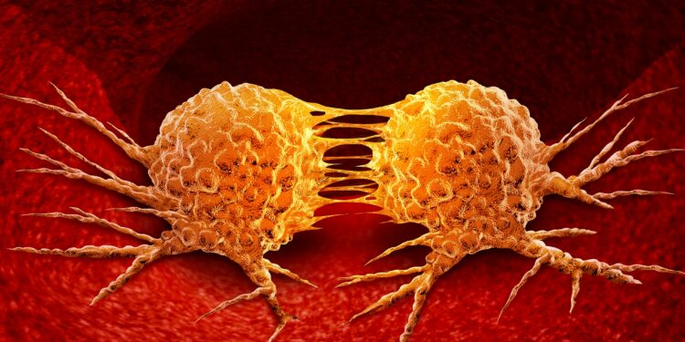 Cancer: New drug stops Tumor growth – Naturopathy naturopathy specialist portal