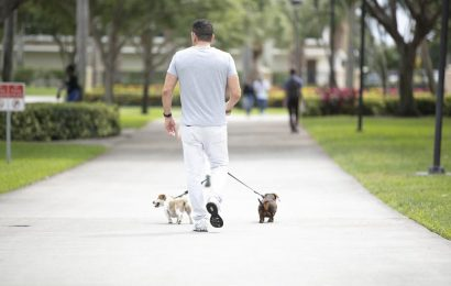 Vets walking pets: Strolls with shelter dogs may reduce PTSD symptoms in military veterans
