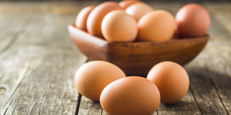 Egg recall: maximum content of chemical Compounds exceeded – Naturopathy naturopathy specialist portal
