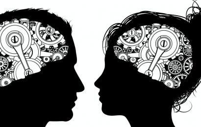 Computer see distinctions in 'male' and 'female' brains