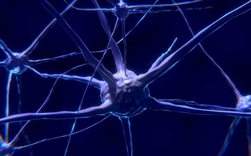 A possible way to prevent Alzheimer's disease: Editing a key gene in human nerve cells