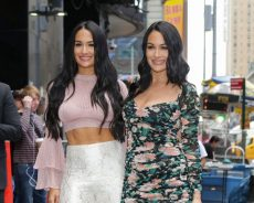 Brie & Nikki Bella Are Planning a WWE Comeback for the Sweetest Reason