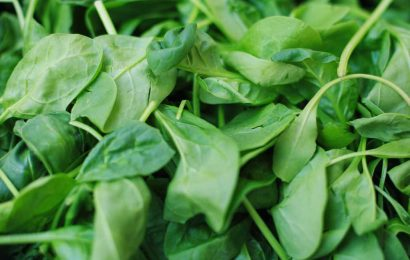 Baby spinach recalled over salmonella concerns