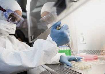Do SARS-CoV-2 mutations affect its transmissibility?