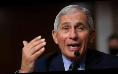 Dr. Fauci is the highest paid employee in the federal government