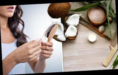Hair loss: Coconut oil could limit the number of hairs lost when brushing