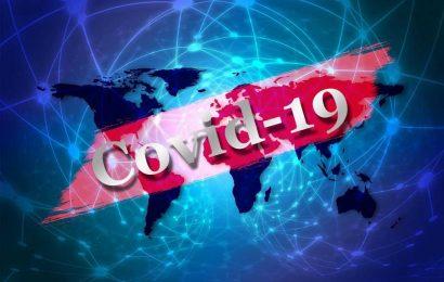 Why India's coronavirus cases have fallen so sharply