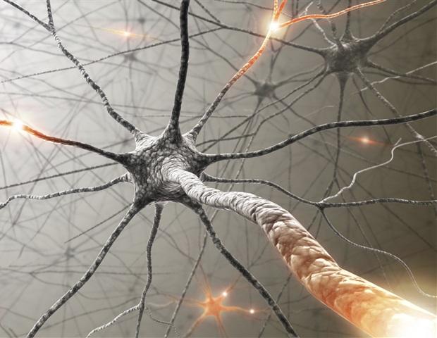 Vasculitic Neuropathy – Inflammation of the Vasculature