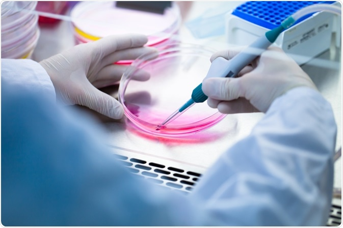 Effects of Mycoplasma Contamination on Research