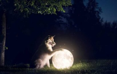 How The Full Moon On April 26 Will Affect Zodiac Earth Signs