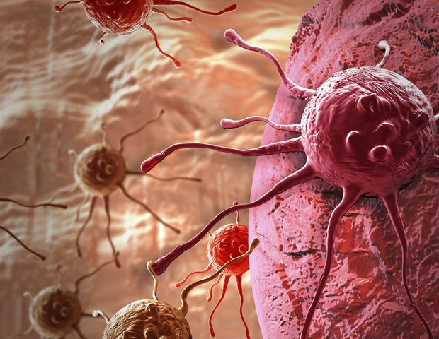 New study could revive once-promising immunotherapies for treating solid tumors