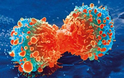 HER3 gene mutations can worsen tumor growth in breast cancer, study suggests