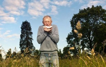 Hayfever symptoms explained: Why is hayfever worse in cities than in countryside?