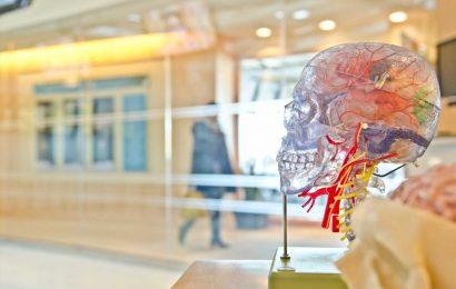 New drug could help halt dementia after multiple head injuries