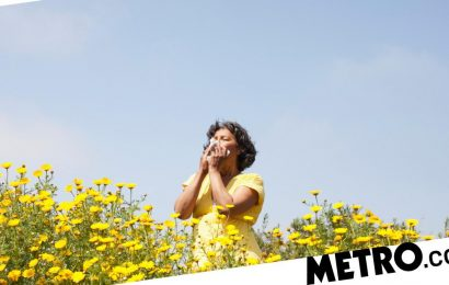 Summer 2021: Why is my hay fever so bad this year?